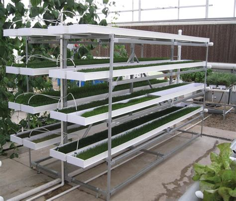 Hydrohobby For All Your Hydroponics Gear by Mini Fodderpro 2 0 Feed System Growers Supply