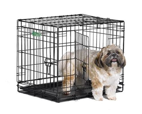 puppy cages at walmart 24 quot icrate cage 2 door walmart ca