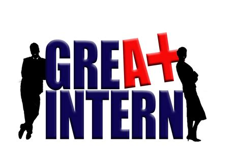 intern it meet our new interns linking partners for niger delta