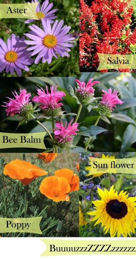 Bee Garden Flowers Plant A Bee Garden Gardening