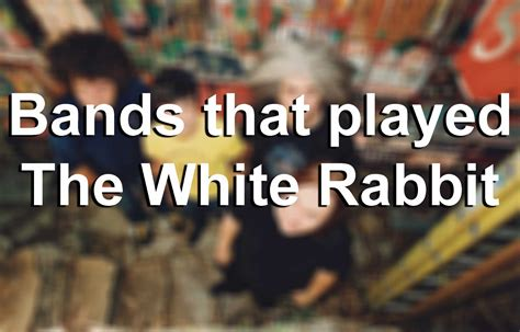 Rabbit Top Sf bands that played the white rabbit sfgate