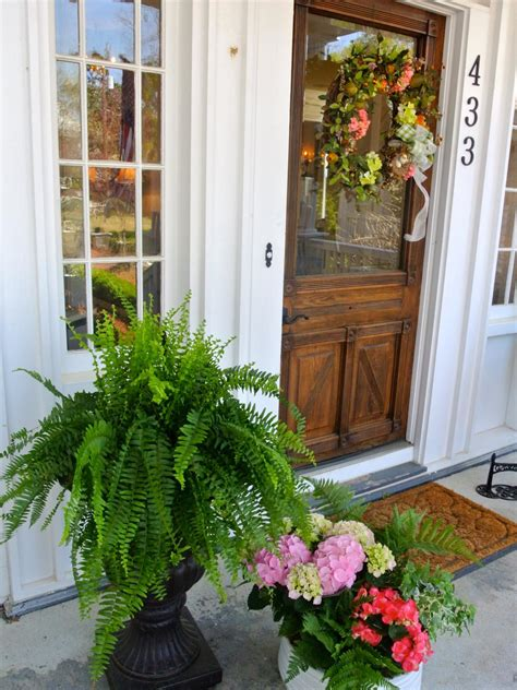 Front Door Plants Front Door And Plant Color Combos Landscaping Ideas And Hardscape Design Hgtv