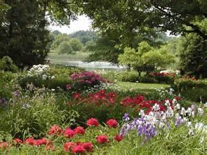 ruisseau fleuri et lilas espace pour