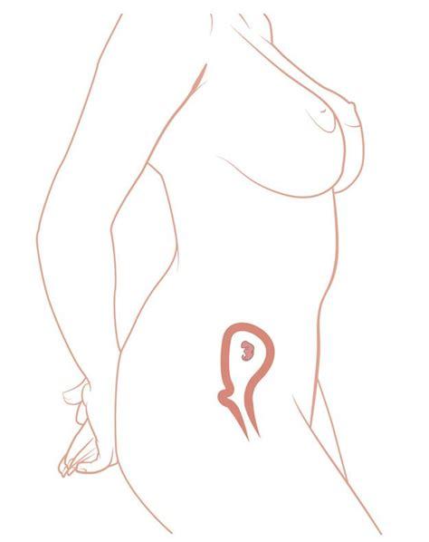 erste schwangerschaftsanzeichen wann 6 schwangerschaftswoche ssw kinder de