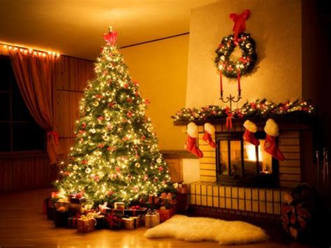 why is a christmas tree a tradition traditions family traditions