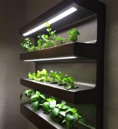app assisted home vegetable garden design indaba