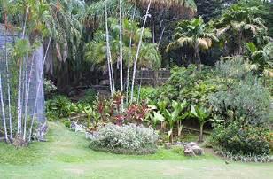 Seychelles National Botanical Gardens Seychelles National Botanical Gardens Seychelles Tourist Information