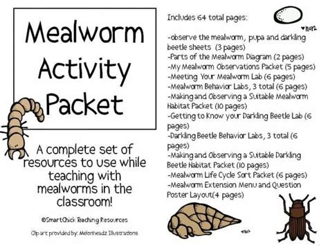 earthworm dissection packet mealworms in the classroom posts activities and we