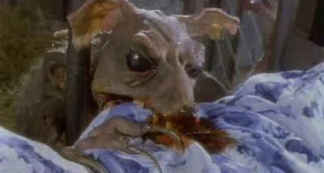 imagenes ratas asquerosas ratas zombies salud y bienestar taringa