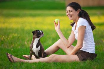 how to play with puppy puppy teach your puppy playtime manners