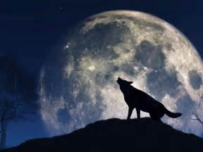 wann ist wieder vollmond wolfsmond heute leuchtet der erste vollmond 2017