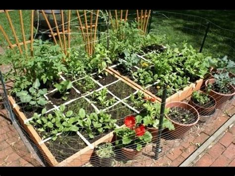 home vegetable garden ideas types   budget youtube