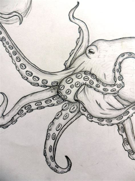 cartoon realism tattoo realistic octopus by letmelivelovedraw on deviantart