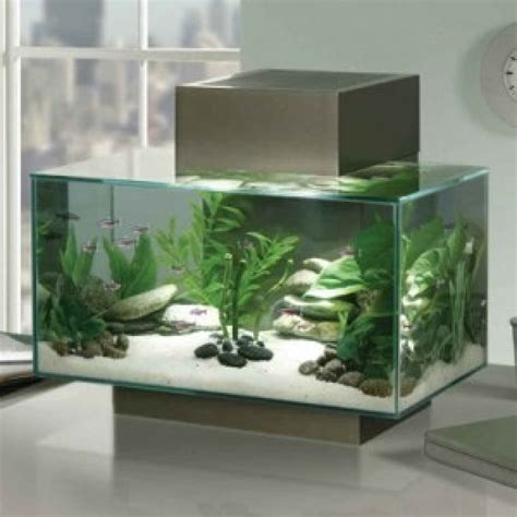 modern aquarium fluval edge pewter aquariums amazing amazon