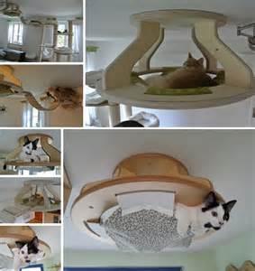 riesen bett selber bauen diy cat hammock table