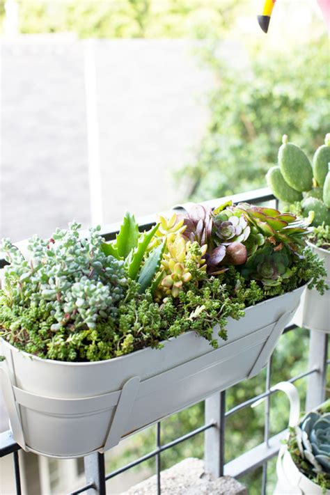 Apartment Balcony Planters by Apartment Porch Planters Trellis Designs Living Room With City Apartment Floral
