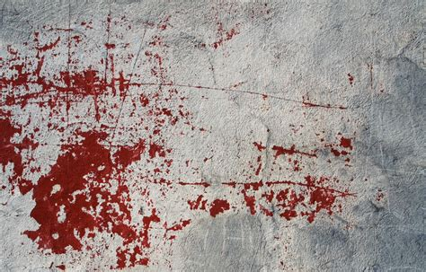 bloodstain pattern analyst jobs how do i become a blood splatter analyst career trend