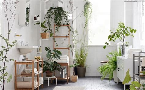 natural ways to go to the bathroom when constipated eco bathroom home design