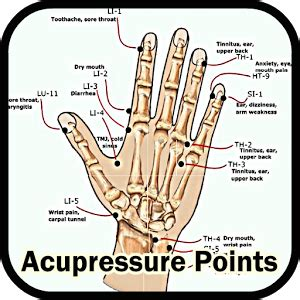 Home Entertainment Design Inc by Acupressure Points Android Apps On Google Play