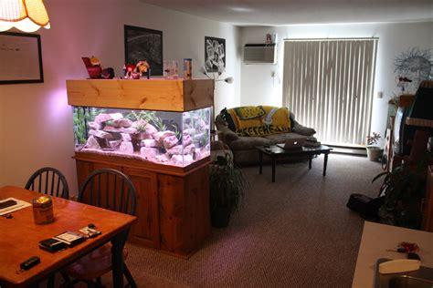 Aquarium Room Divider 75 Gallon Aquarium Tank Divider 29 Gallon 11 55 Quot X16 75 Quot Tank Acrylic Divider Aquarium With