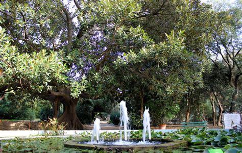 giardino botanico cagliari 10 cose da fare a cagliari itinerario nella citt 224 pi 249