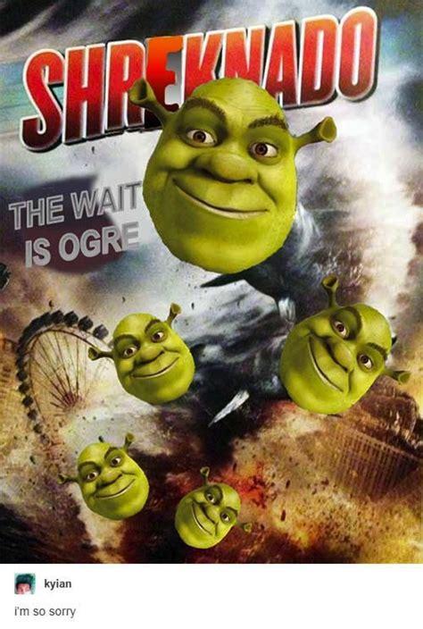 Shrek Memes - image gallery shrek funny