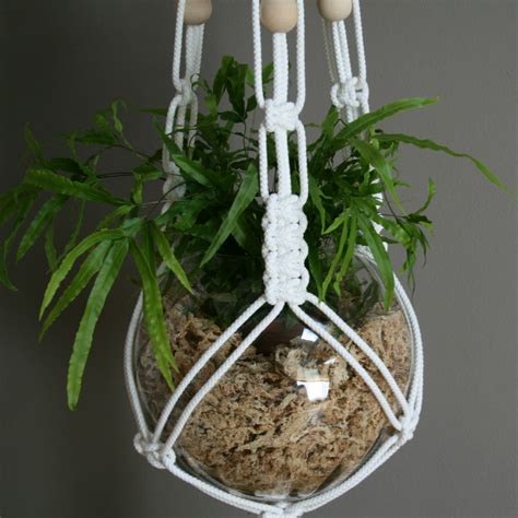 Make A Plant Hanger - white macrame plant hanger by the knot studio miss v