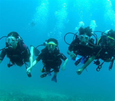 dive packages scuba dive package scuba diving certificate scuba lessons