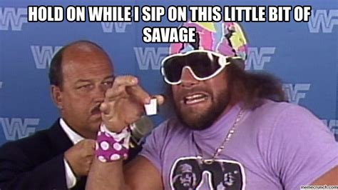Randy Savage Meme - hold on while i sip on this little bit of savage