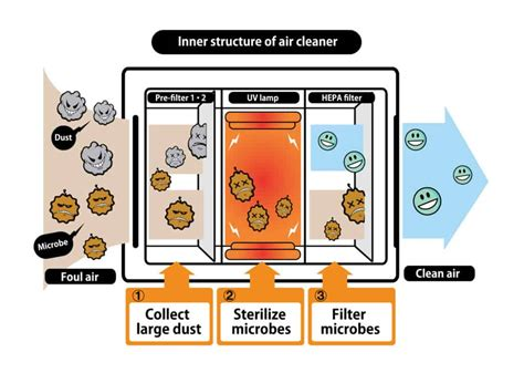 revealed  air purifiers  work air purifier planet