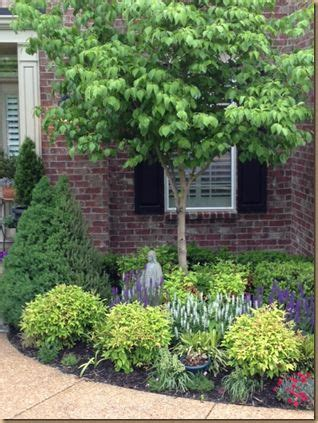 small trees and shrubs for landscaping in front yard hot landscaping small front yard foundation planting evergreen shrubs