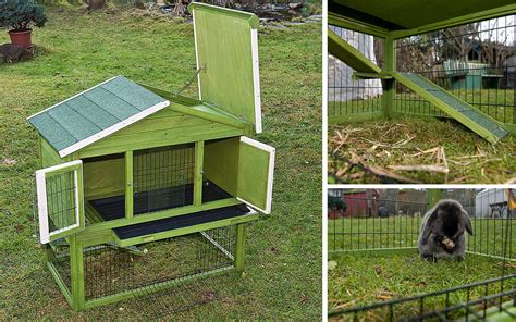 coniglio nano in giardino il coniglio in giardino guida alla progettazione