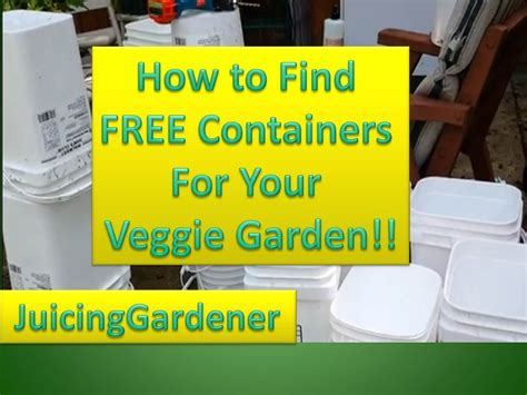 Container Garden Ideas   How To Find FREE Containers For