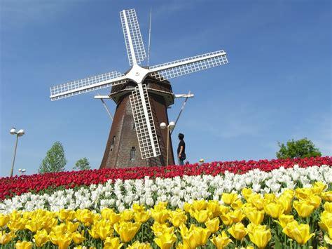 Pajangan Kincir Angin Dari Negara Belanda Untuk Cinderamata 046 keindahan itu ada di belanda kompetiblog 2013
