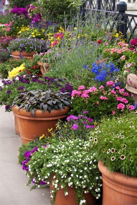 Pots Container Garden And Gardening On Pinterest Summer Garden Ideas