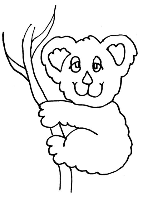 printable koala coloring pages koala bear pictures to color az coloring pages