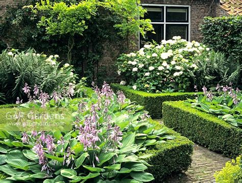 formal front garden gap gardens front garden with formal edged beds of hosta