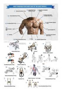 best 25 chest workouts ideas on arm lift