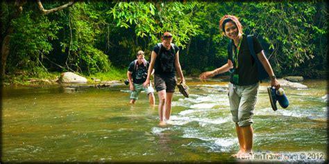Jungle Ape Import Bangkok trekking in thailand with tontan travel jungle trekking in thailand