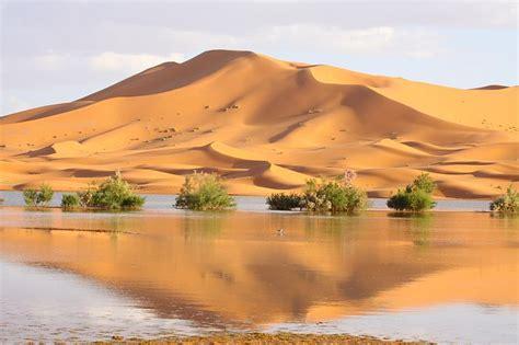 Snow In Sahara A Beleza Desoladora Dos Desertos Da Terra Fotos
