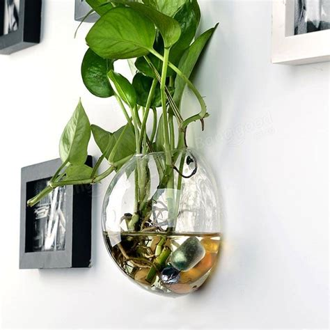 Wall Mounted Flower Vase by Wall Mounted Half Shaped Glass Flower Vase Home Garden Wedding Decoration At