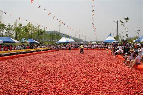 festival in daegu south korea free daegu travel tomato festival in korea 2016
