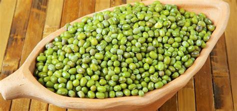Jual Bibit Biji Benih jual bibit biji benih kacang hijau di lapak maharani99