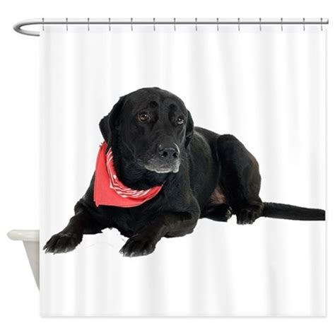 black lab shower curtain black lab shower curtain by theonlinezoo