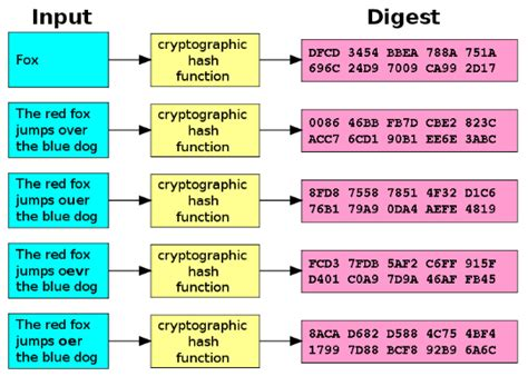 Md5 Hash Lookup What All This Md5 Hash Stuff Actually Means Technology Explained