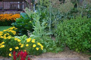 top 5 flower bed and backyard vegetable garden ideas