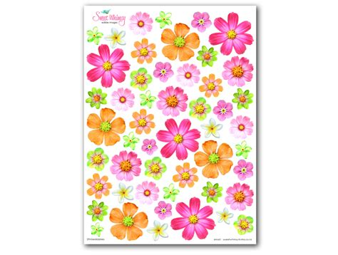 Edible Wafer Paper edible wafer paper blossoms felt