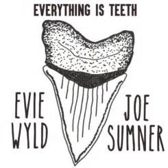 everything is teeth everything is teeth pantheon graphic novels by evie wyld reviews discussion bookclubs lists