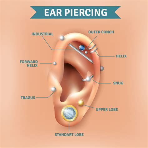 all about conch piercing that you need to know ear