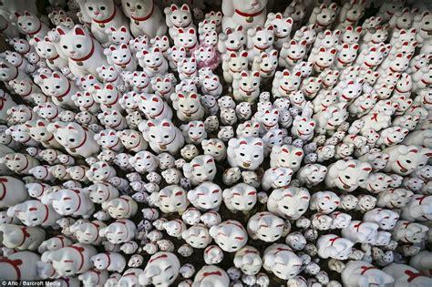 thousands of maneki neko cats are placed at japanese